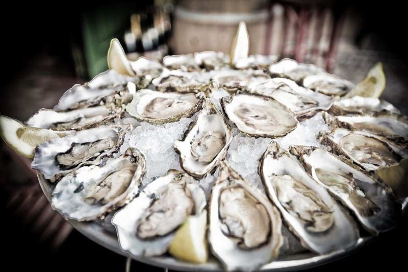 Oysters-16-of-1051